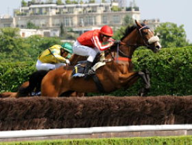 Sports in Paris: horserace in Bois de Boulogne