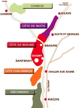 The map of Burgundy best vineyards