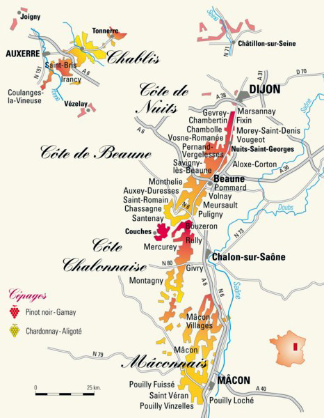Wine Tours From Paris To Burgundy