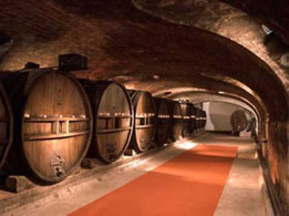 Burgundy wine tours from Paris - Cave Patriarche, Beaune