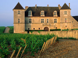 Burgundy wine tours from Paris - Famous Clos de Vougeot