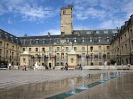 Burgundy wine tours from Paris - Dijon Burgundy Ducal Palace
