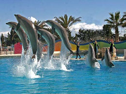 Marineland - Antibes - French Riviera