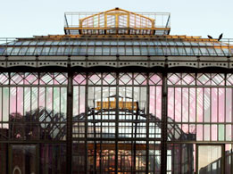 The tropical glasshouse at Paris Natural History Museum