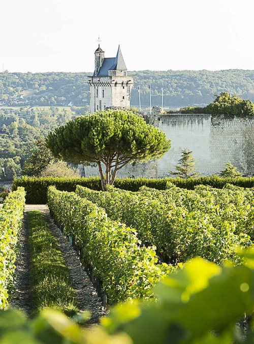 The Loire Valley combines wine and castles