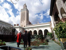 Paris Mosque gardens