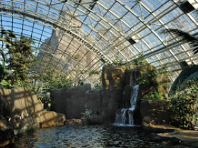 Tropical glasshouse at Paris Zoo