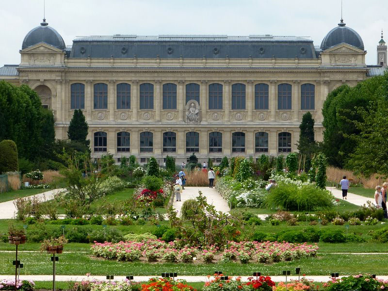 Museum paris for Jardin ds plantes